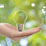 5 Tips to Make Your Office More Environmentally Friendly