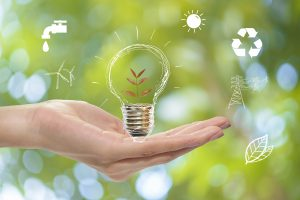 The Evolution of the Environmental Management System - Ideas on how to protect the environment